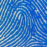 """Fake fingerprint"" Chinese woman fools Japan controls"